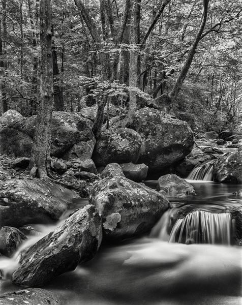 smokey mountain streama